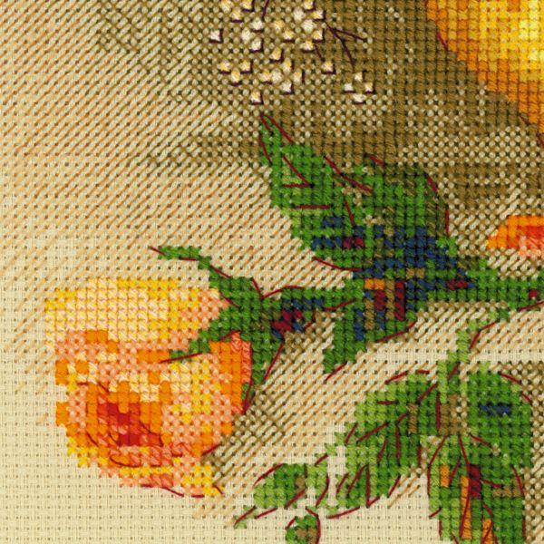 Вышивка риолис чайные розы