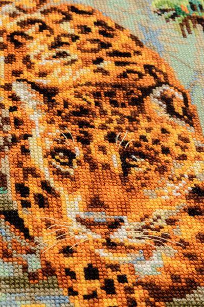 """""""Откуда у леопарда пятна""""?"""