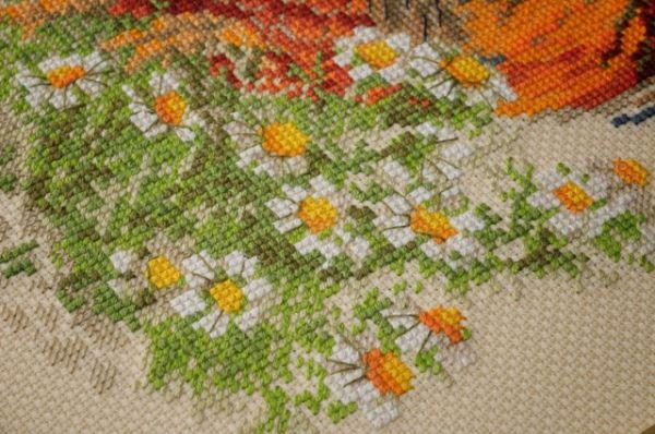 Любителям вышивки цветов могут