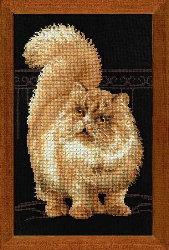 вышивка крестом персидский кот