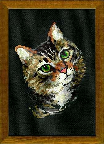 Риолис кошки вышивка крестом